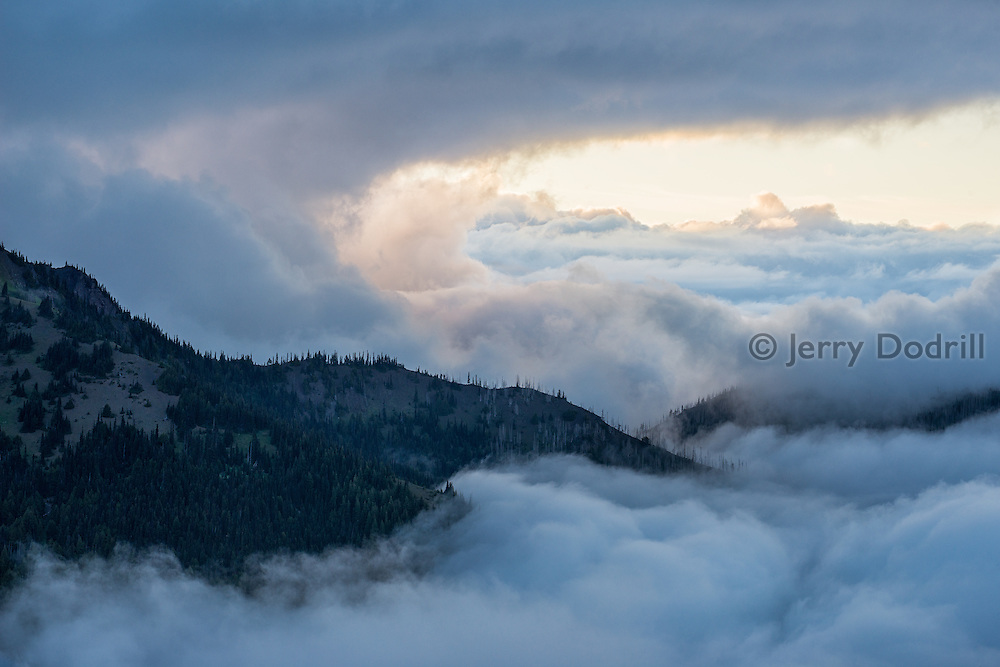 Fog rises above the Strait of Juan de Fuca from high on Hurricane Ridge, Olympic Peninsula National Park, Washington.