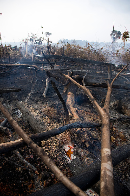 Para State, Brazil. August 30th 2007.  Morais D'Almeida municipality (Brazilian Amazon). Views of the rainforest during the burning season were big sections are set on fire by farmers to be cleared for soy farming or cattle grazing.
