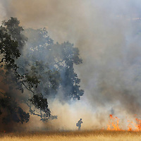 A firefighter walks into the smoke as a controlled burn travels across dry brush at Arastradero Preserve in Palo Alto, CA, May 30, 2013.