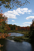Small pond in fall colors