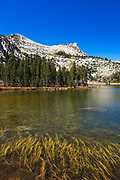 Elizabeth Lake and Unicorn Peak, Tuolumne Meadows, Yosemite National Park, California USA