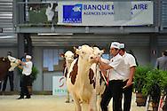 13/05/15 - BESANCON - DOUBS - FRANCE - Concours MONTBELIARD PRESTIGE 2015 - Photo Jerome CHABANNE