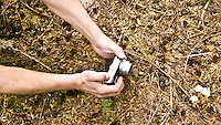 arms reach with a camera to photograph Indian Pipes in the Tahoma State forest