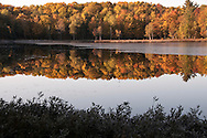 Fall color along an unnamed lake of the Hiawatha National Forest near Munising Michigan.