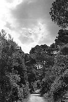 Kroatia 2012-06.<br /> En av mange stier i skogene på Lopud utenfor Dubrovnik i Kroatia.<br /> Foto: Svein Ove Ekornesvåg