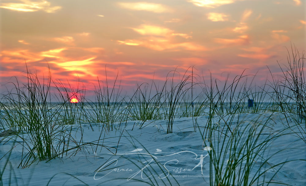 Young sea oats wave in the breeze as the sun sets on Dauphin Island in Alabama, Nov. 23, 2012/ (Photo by Carmen K. Sisson/Cloudybright)