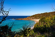 Shelly Beach, Elizabeth Bay, New South Wales, Australia