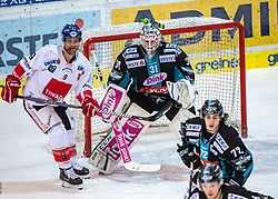 17.02.2019, Keine Sorgen Eisarena, Linz, AUT, EBEL, EHC Liwest Black Wings Linz vs Fehervar AV 19, 47. Runde, im Bild v.l. John Lammers (HC TWK Innsbruck Die Haie), Tormann David Kickert (EHC Liwest Black Wings Linz) // during the Erste Bank Eishockey League 47th round match between EHC Liwest Black Wings Linz and Fehervar AV 19 at the Keine Sorgen Eisarena in Linz, Austria on 2019/02/17. EXPA Pictures © 2019, PhotoCredit: EXPA/ Reinhard Eisenbauer