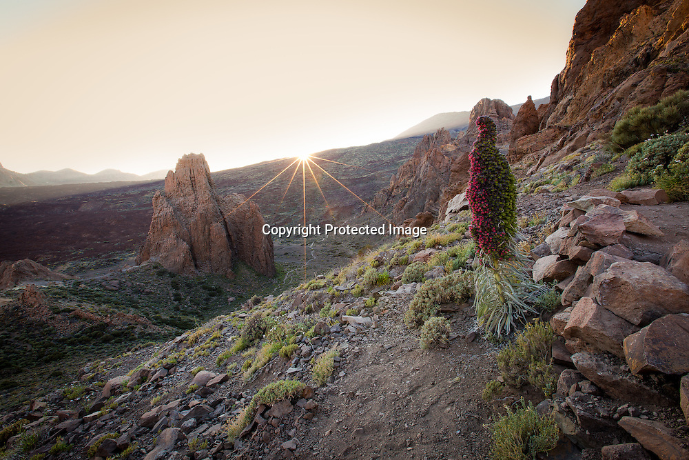 One frame from a timelapse of the sunset on El Tiede, Tenerife
