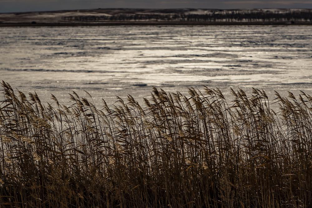 Long Lake area, central North Dakota, Jan. 20, 2018