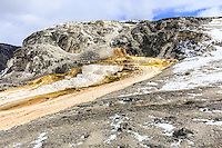 Walking around the upper loop around Mammoth Hot Springs in Yellowstone<br /> <br /> &copy;2015, Sean Phillips<br /> http://www.RiverwoodPhotography.com