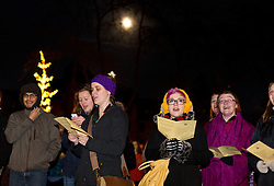 Christmas tree lighting in Red Square at PLU on Wednesday, Dec. 3, 2014. (PLU Photo/John Froschauer)
