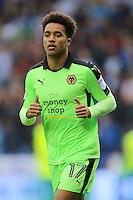 Wolverhampton Wanderers' Helder Costa