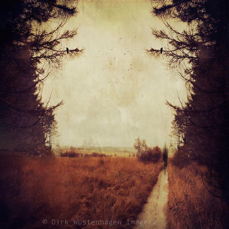 Wanderweg durch das Hohe Venn an stürmischem Herbsttag mit geisterhafter Silhouette , Longfaye, Belgien