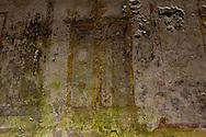 """Roma 1 Aprile 2015<br /> Presentato il progetto per il risanamento della Domus Aurea, realizzato dalla Soprintendenza speciale per i beni archeologici di Roma, che consiste nella sistemazione del  giardino pensile,una parcella di 800 mq ,realizzato con tecnologie sostenibili che farà da «scudo» alla  Domus Aurea impedendo le infiltrazioni d'acqua. L'interno della Domus Aurea. Il Grande Criptoportico. Affresco dipinto su un muro<br /> Rome, April 1, 2015<br /> Presented the project for the rehabilitation of the Domus Aurea, fulfilled  by the Superintendence for Cultural Heritage of Rome, which is the arrangement of the roof garden, a plot of 800 square meters, made with sustainable technologies that will be the """"shield"""" at the Domus Aurea for  preventing water infiltration. The interior of the Domus Aurea. The Great cryptoporticus. Fresco Painting on a  wall"""