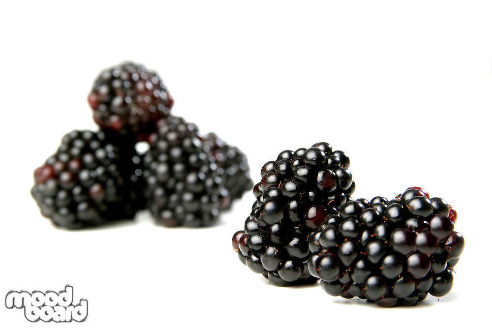 Blackberries on white background - close-up