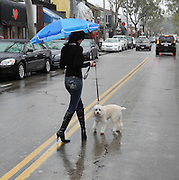 Street Scene Of Newport Beach In The Rain