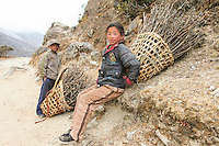 Nepali children collecting the days firewood in Everest National Park, Nepal.