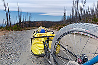 WA15234-00...WASHINGTON - Heading out through the burned forest lands of the Loomis State Forest on Road 159, following the Butler Washington Discovery Route backcountry motorcycle route.