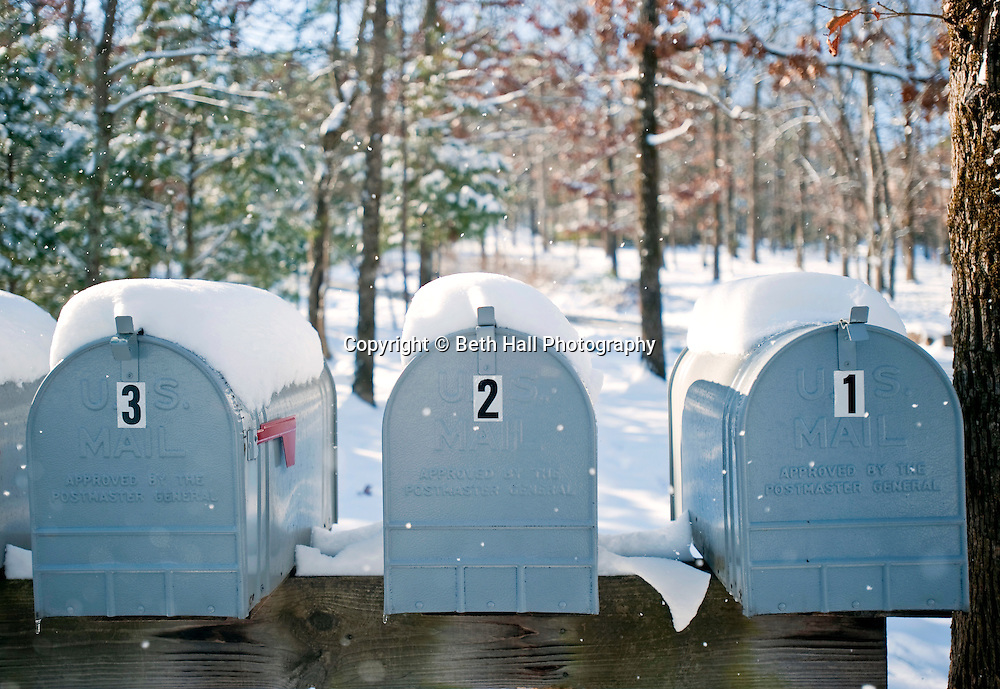 A row of snow covered mailbox against a wooded backdrop.