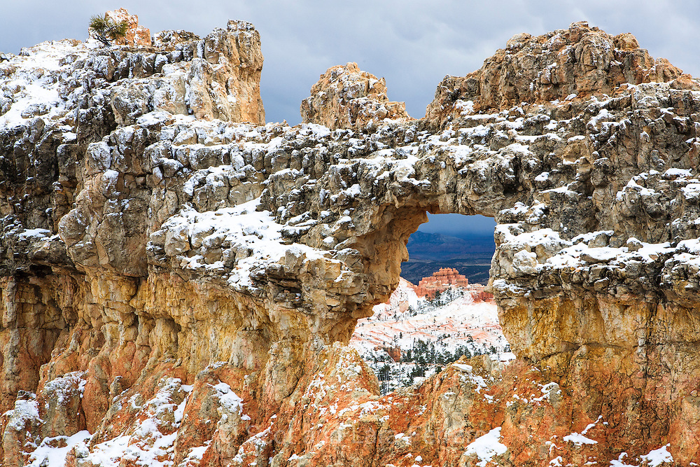 A short, early season snow storm caught us on our hike of Bryce Canyon and added to the local beauty.