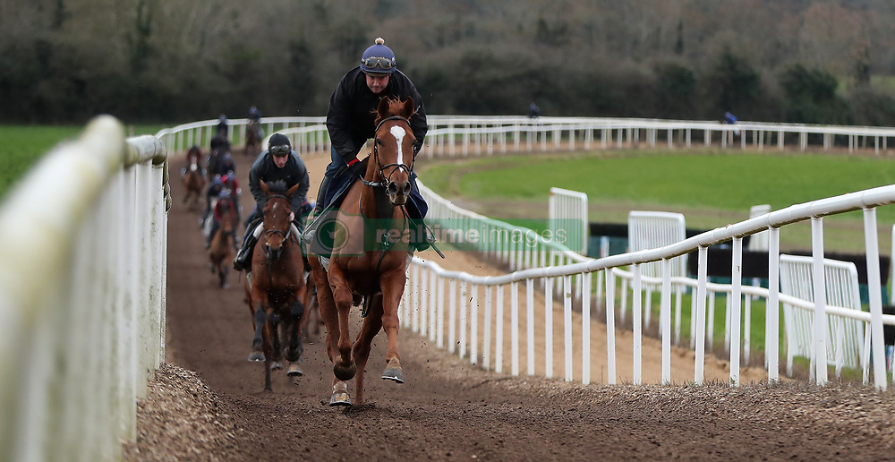 Samcro leads the way on the gallops during the stable visit to Gordon Elliott's yard at Cullentra House, County Meath.