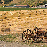 Old tractors at field with hay packs, Solvang, California