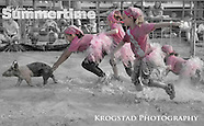 Gallatin County Fair 2014