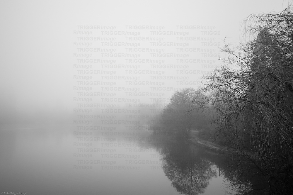 A winding path, reflections in the water and large trees on a foggy day.