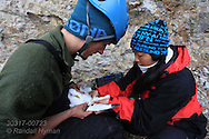 Grad student Dagfinn Breivik Skomsø holds kittiwake as colleague Solveig Nilsen secures thermocouple in cloac to take bird's temperature during field research on breeding colony at Blomstrand island; Kongsfjorden, Svalbard.
