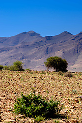 Foothills of the Atlas mountains south of Marrakech, Morocco.<br /> <br /> (c) Andrew Wilson | Edinburgh Elite media