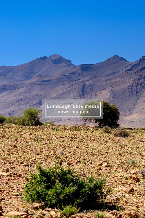 Foothills of the Atlas mountains south of Marrakech, Morocco.<br /> <br /> (c) Andrew Wilson   Edinburgh Elite media