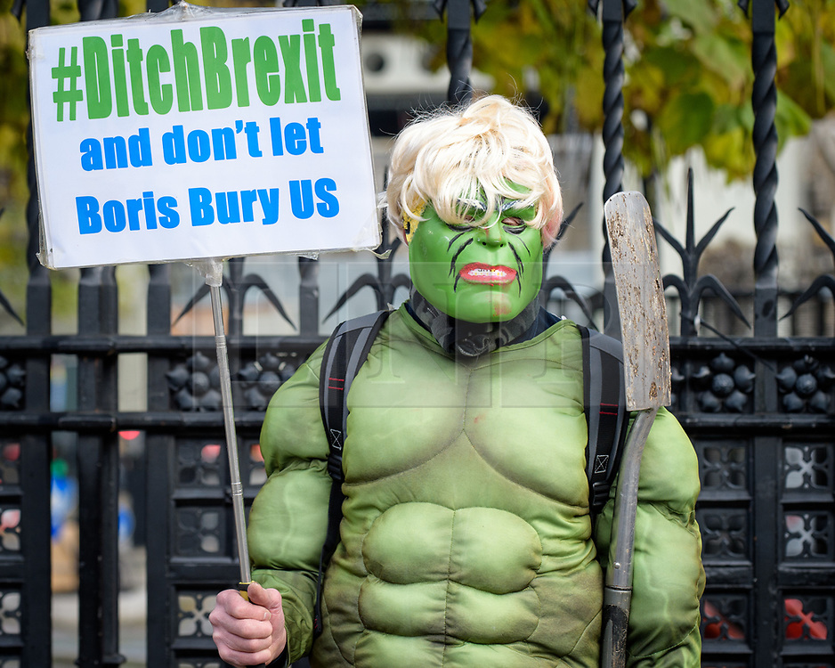 © Licensed to London News Pictures. 31/10/2019. London, UK. An anti-Brexit supporter gathers outside the Houses of Parliament Westminster, London on October 31st, 2019, the day the UK was due to Leave the EU, before an extension was granted.. A general election will be held on December 12th.  Photo credit: Andre Camara/LNP