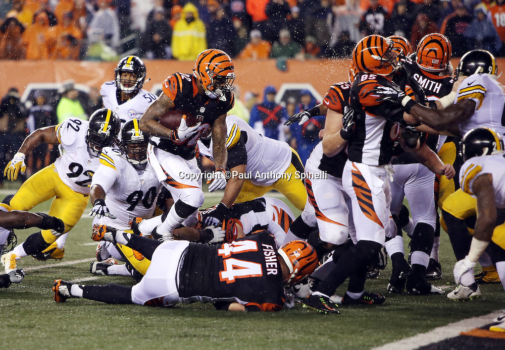 Cincinnati Bengals running back Jeremy Hill (32) runs up the middle for a one yard touchdown that cuts the Pittsburgh Steelers fourth quarter lead to 15-7 during the NFL AFC Wild Card playoff football game against the Pittsburgh Steelers on Saturday, Jan. 9, 2016 in Cincinnati. The Steelers won the game 18-16. (©Paul Anthony Spinelli)