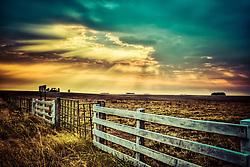 O Pampa Gaúcho está situado no sul do Brasil, no Estado do Rio Grande do Sul, na divisa com o Uruguay. A região foi disputada entre portugueses e espanhóis nos séculos XVII e XVIII, e foi repartida em sesmarias, sob o poder português. O Pampa é uma região de clima temperado, com temperaturas médias de 18°C, formada por coxilhas onde se situam os campos de produção pecuária e as várzeas que se caracterizam por áreas baixas e úmidas. A região sul tem, na pecuária, uma tradição que se iniciou com a colonização do Brasil. A Metade Sul, onde fica a região do Pampa, é a de mais antiga ocupação no Rio Grande do Sul. Embora tenha 25% da população do Estado, responde por apenas 15% do PIB. Esse é o principal desafio do Pampa no século 21. FOTO: Jefferson Bernardes / Preview.com