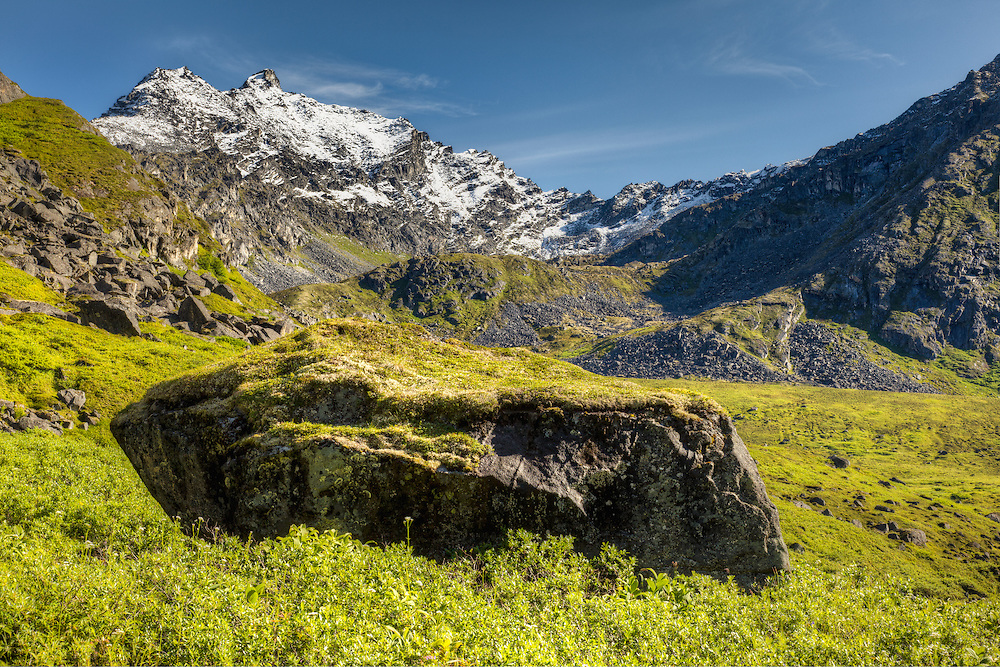 HDR composite of early snow on the Talkeetna Mountains contrasts with the alpine meadows at Archangel Valley in Hatcher Pass in Southcentral Alaska. Summer. Morning.