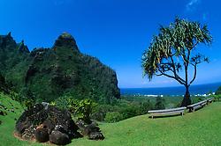 Rest Stop Along the Awa'awapui Trail, Kauai, Hawaii, US