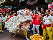 "08 FEBRUARY 2016 - BANGKOK, THAILAND:  Lion dancers perform for Chinese New Year at a small Chinese shrine in Bangkok's Chinatown district, during the celebration of the Lunar New Year. Chinese New Year is also called Lunar New Year or Tet (in Vietnamese communities). This year is the ""Year of the Monkey."" Thailand has the largest overseas Chinese population in the world; about 14 percent of Thais are of Chinese ancestry and some Chinese holidays, especially Chinese New Year, are widely celebrated in Thailand.      PHOTO BY JACK KURTZ"