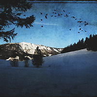 Winter landscape in Austria. Stepping out of a forest. Added texture.
