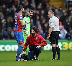 Crystal Palace's Andy Johnson goes off with an injury  - Photo mandatory by-line: Alex James/JMP - Mobile: 07966 386802 - 23/11/2014 - Sport - Football - London -  - Crystal palace  v Liverpool - Barclays Premier League