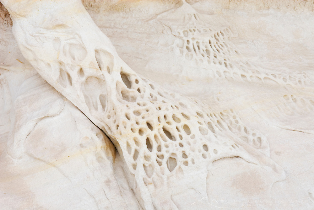 Strange erosion patterns and shapes in white sandstone, Grand Staircase Escalante National Monument Utah