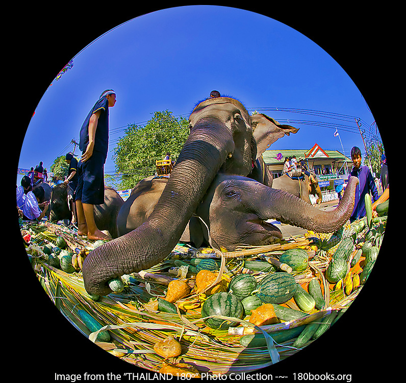 The Elephant Banquet on day 2 of The Amazing Surin Elephant Round-up in Thailand