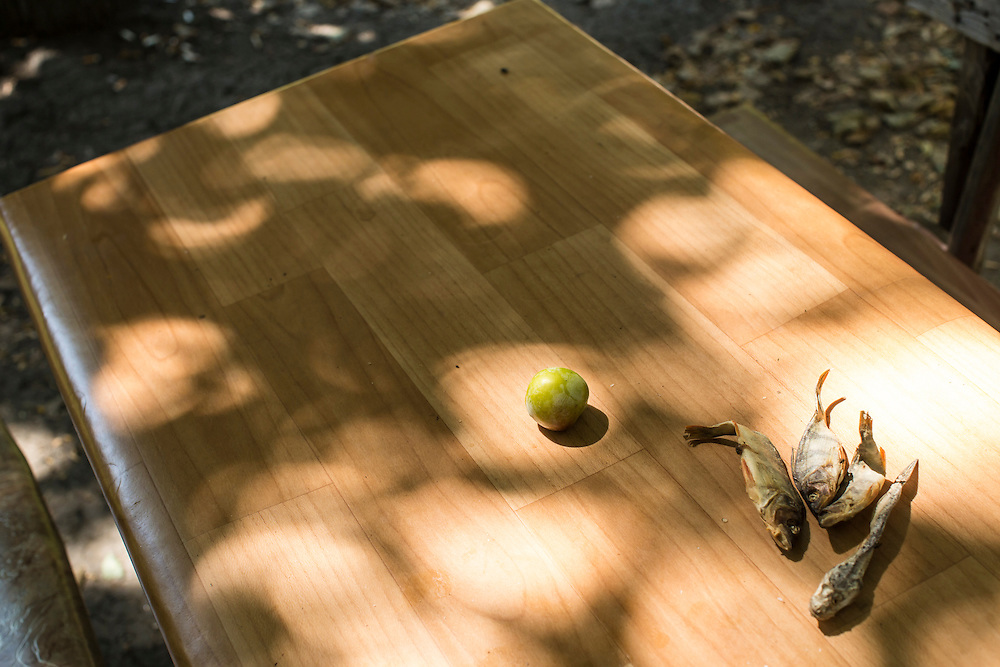 On an outdoor table in the Ploshchadka neighborhood, which has been heavily bombarded in recent days, a plum and dried sit unattended on Wednesday, July 30, 2014 in Donetsk, Ukraine.