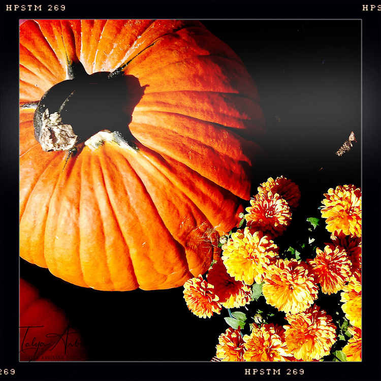 Fall display - Davenport, Iowa