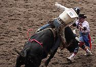 Bull Rider Theodore Paul Bert rides 332 Catherine Casqvarelli BH, 26 July 2007, Cheyenne Frontier Days