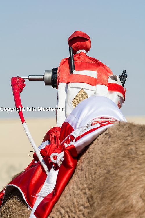 Robot remote controlled jockey at camel races at Dubai Camel Racing Club at Al Marmoum in Dubai United Arab Emirates