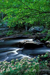 Spring at Packer's Falls on the Lamprey River.  A National Wild and Scenic River.  Durham, NH