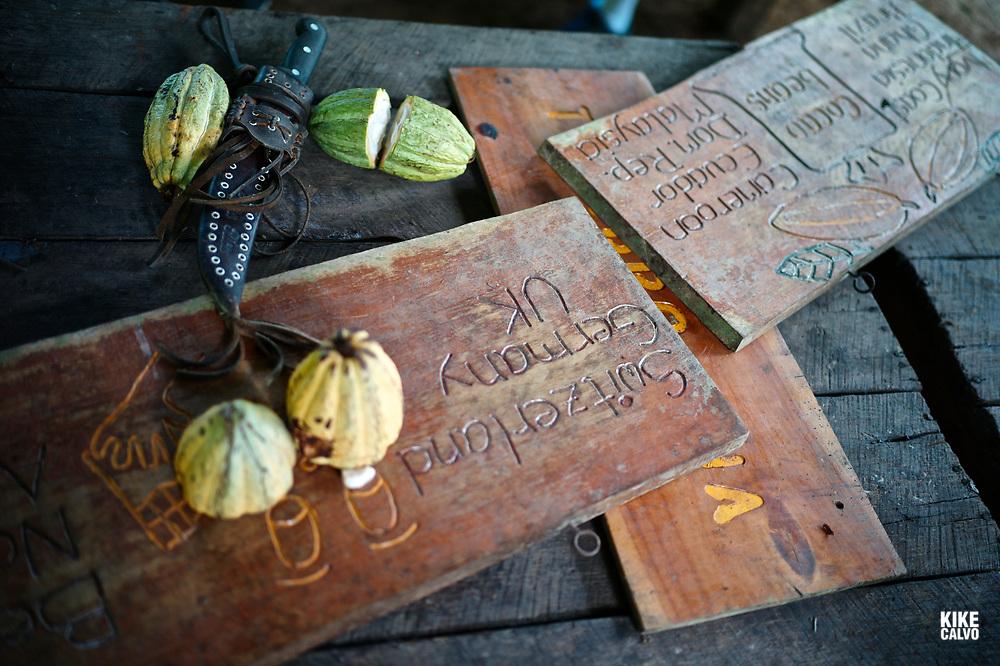 Cacao fruit and a machete