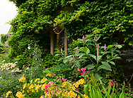 Phytolacca americana and Alstroemeria in front of a window at Cothay Manor, Greenham, Wellington, Somerset, UK