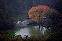 NY Central Park, in autumn